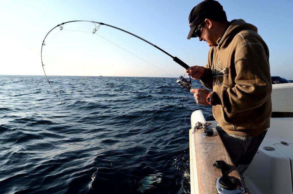 Pesca-embarcación