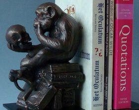 61caf17ecb38c4cab81c471268e331a0--monkey-museums